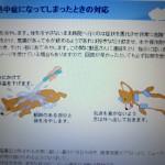 IMG_0554[1]