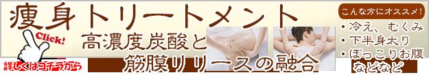 痩身トリ-トメント